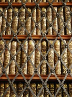 Close Up View of Antique Books Behind Caged Shelves by Jim Richardson