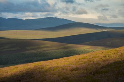 Heather Covers the Hills of the Cairngorms National Park in Scotland by Jim Richardson