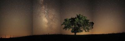 Stars shine brightly above the Tallgrass Prairie Preserve by Jim Richardson