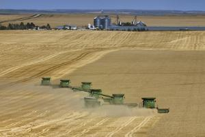 Wheat Harvest on a Farm in South Dakota by Jim Richardson