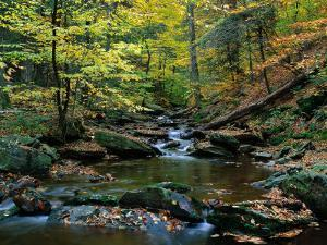 Ricketts Glen State PArk, PA by Jim Schwabel