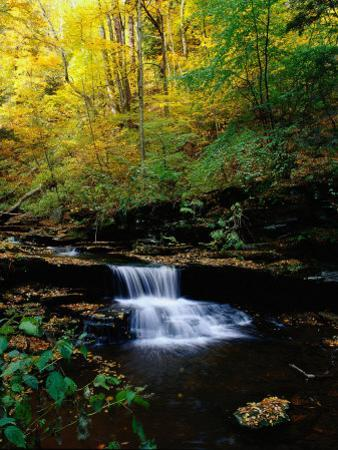 Waterfalls, Ricketts Glen State PArk, PA