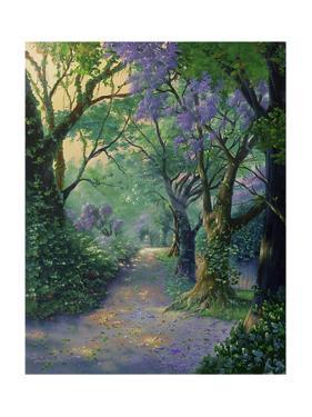 The Way Home by Jim Warren