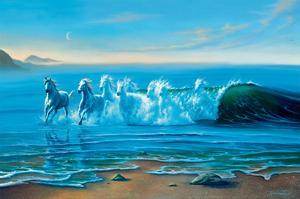 Wild Water by Jim Warren
