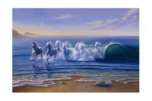Wild Waters by Jim Warren