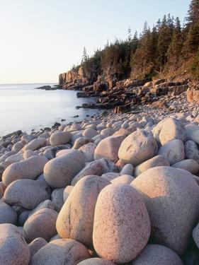 Rocky Shore by Jim Zuckerman