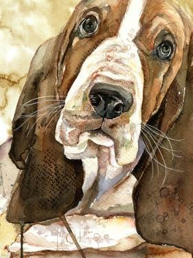 Sweet Basset Hound by Jin Jing