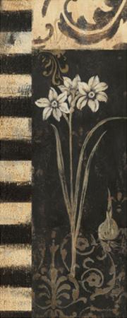 Black and White Paper Whites by Jo Moulton
