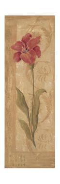 Evening Lily by Jo Moulton