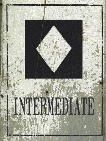 Intermediate by Jo Moulton