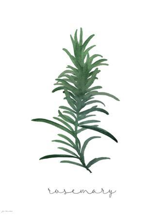Rosemary by Jo Moulton