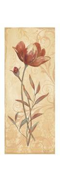 Terra Blooms I by Jo Moulton