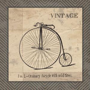 Vintage Bicycle by Jo Moulton