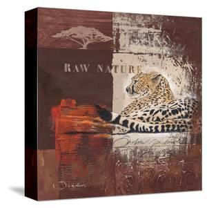 Raw Nature by Joadoor