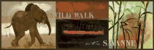 Wild Walk by Joadoor
