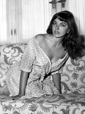 Joan Collins, English actress born May 23rd, 1933, here 1955 (b/w photo)