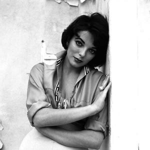 Joan Collins, English actress born May 23rd, 1933, here 1958 (b/w photo)