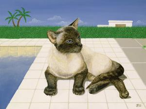 Siamese cat by a swimming pool by Joan Freestone