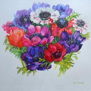 Anemones: Red, White, Pink and Purple by Joan Thewsey