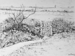 Cottage Gate and View Beyond,2015 by Joan Thewsey