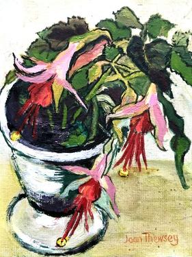 Fuchsias by Joan Thewsey