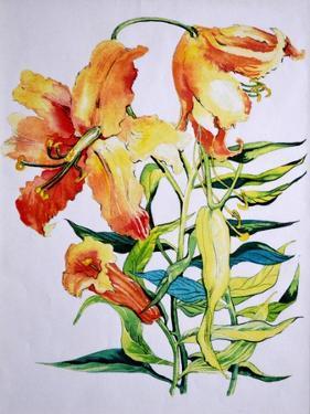 Orange Lilies 1,1985 by Joan Thewsey