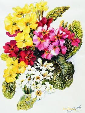 Primroses, White, Yellow, Pink and Red, 2000 by Joan Thewsey