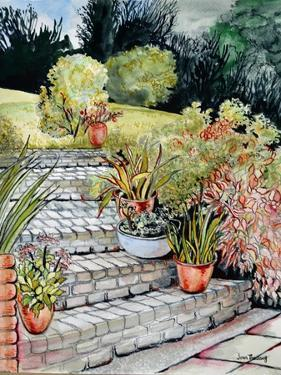 Steps up to the Garden,2014 by Joan Thewsey