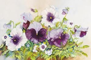 Early Pansies by Joanne Porter