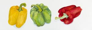 Yellow, Green, and Red Peppers by Joanne Porter