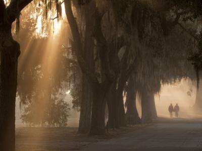 Boys Walking in Early Morning Fog at Bethesda, Savannah, Georgia, USA by Joanne Wells