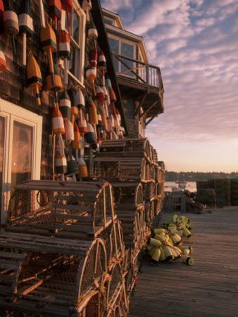 Early Light in Fishing Village of Bernard, Maine, USA by Joanne Wells