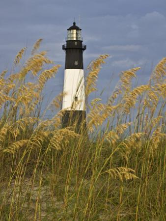 Lighthouse and Seaoats in Early Mooring, Tybee Island, Georgia, USA by Joanne Wells
