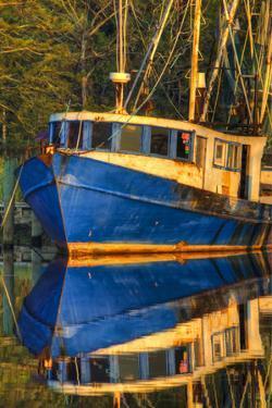 Shrimp Boat Docked at Harbor, Fishing, Apalachicola, Florida, USA by Joanne Wells