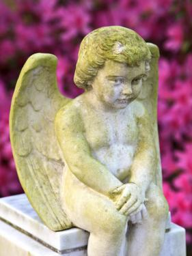 Statue of a Cherub in Bonaventure Cemetery, Savannah, Georgia, USA by Joanne Wells