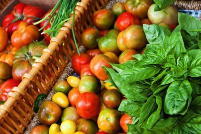 Tomatoes and Basil at Farmers' Market, Savannah, Georgia, USA