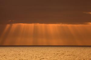 USA, Acadia National Park, Maine. Rays from morning sun along Ocean drive. by Joanne Wells