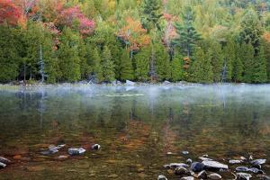 USA, Maine. Acadia National Park, morning fog at Bubble Pond. by Joanne Wells