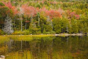 USA, Maine. Acadia National Park, reflections in the fall at Bubble Pond. by Joanne Wells