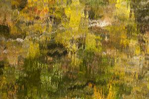 USA, Tennessee. Reflections along the Little River in the Smoky Mountains. by Joanne Wells