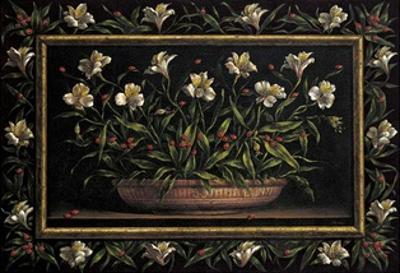 Flores y Mariquitas
