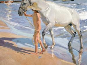 Bathing of a Horse by Joaquín Sorolla y Bastida