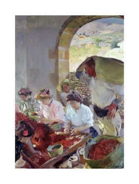 Preparing the Dry Grapes, 1890 by Joaquín Sorolla y Bastida
