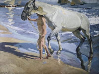 White Horse by Joaquín Sorolla y Bastida