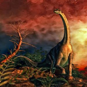 Jobaria Was a Sauropod Dinosaur That Lived During the Middle Jurassic Period