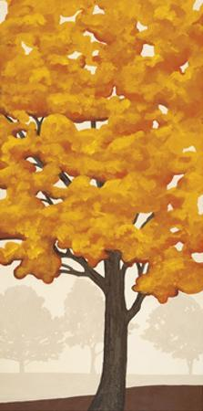 Autumn's Glory II