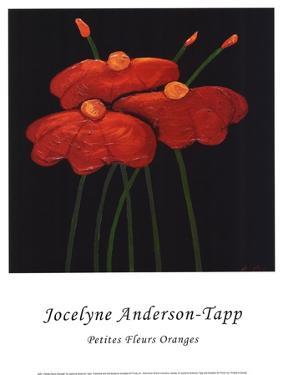 Petite Orange by Jocelyne Anderson-Tapp