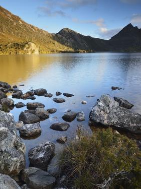Cradle Mountain and Dove Lake, Cradle Mountain-Lake St. Clair National Park, Tasmania, Australia by Jochen Schlenker