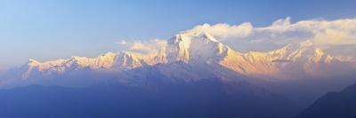 Dhaulagiri Himal Seen from Khopra, Annapurna Conservation Area, Dhawalagiri (Dhaulagiri), Nepal