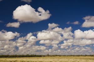 Outback Scenery, Queensland, Australia, Pacific by Jochen Schlenker